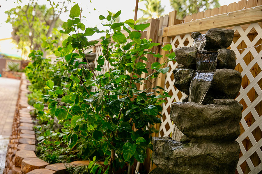 waterfall feature with rocks and plants